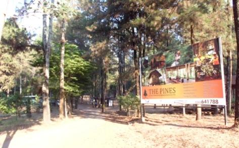 The Pines Taman Dayu, lokasi camp yang asyik.
